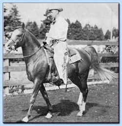Abu Baha under Saddle