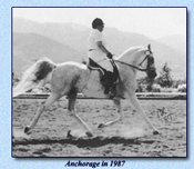 Click to view larger image of Anchorage (67699 bytes)