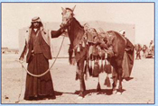 Bedouin with his horse